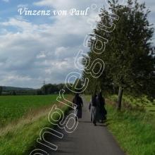 Nr. 415  / Motiv: Weg zur Domäne Marienburg bei Hildesheim