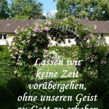 Nr. 417  / Motiv: Magdalenengarten in Hildesheim