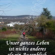 Nr. 424  /  Motiv: Blick auf Hildesheim vom Steinberg