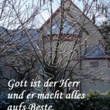 Nr. 466 / Motiv: Winter im Mutterhaus-Garten