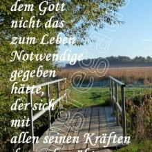 Nr. 497 / Motiv: Landschaft bei Germershausen auf dem Eichsfeld (Landkreis Göttingen)