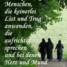 Nr. 529 / Motiv: Drei Schwestern bei einer Wanderung am Steinberg in Hildesheim